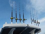 Bluesails Sportfishing gear