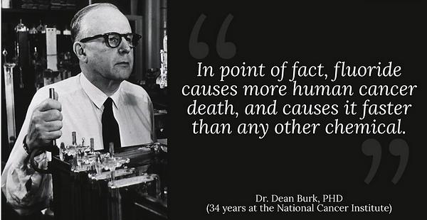 Dr Burk.png
