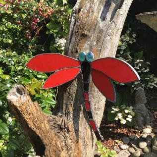 red butterfly.JPG