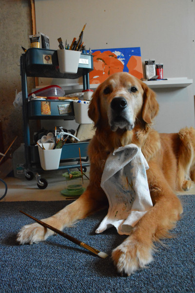 Golden Retriever laying down with paint brush and art supplies.