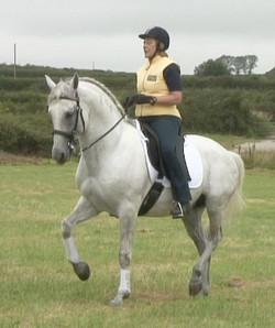 Heather Moffett riding in the Vogue Iberica Dressage Saddle