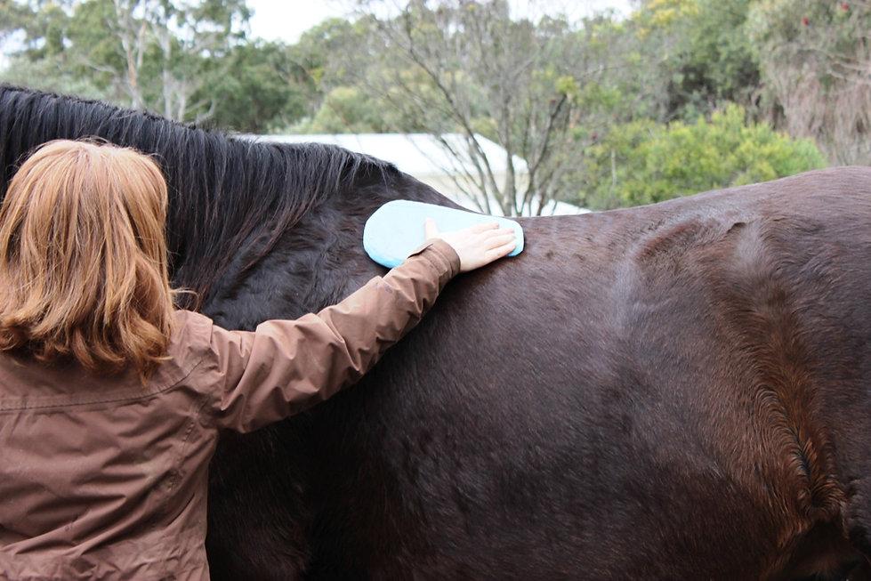 Saddle shimming