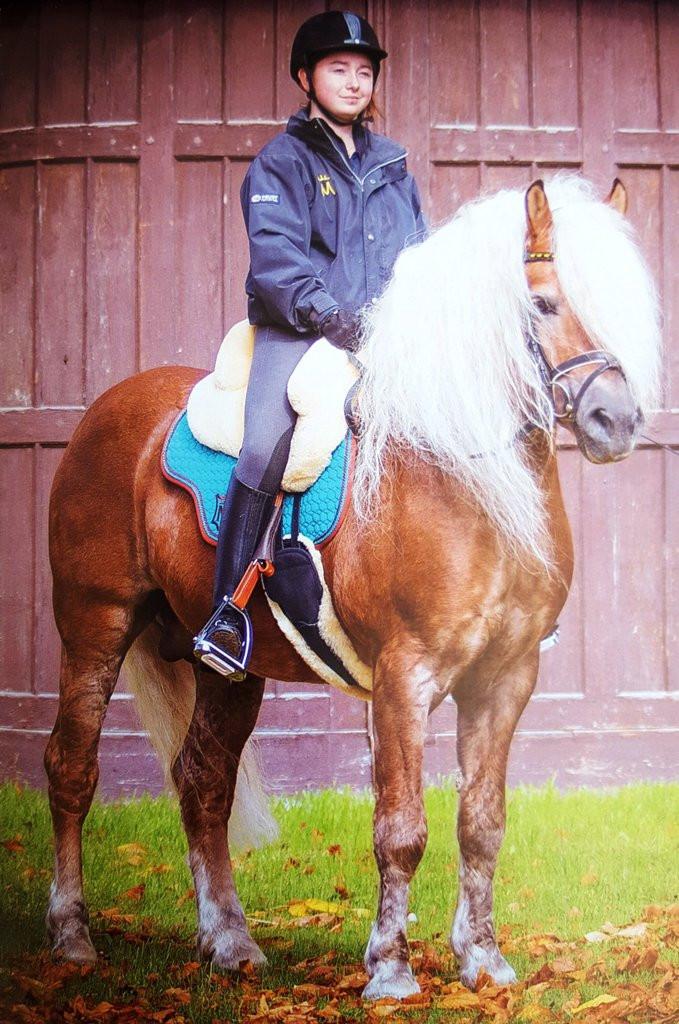 Mattes Fellsattels | Holistic Equine Saddlery & Tack