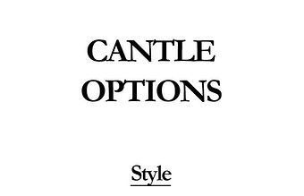 Cantle styles.jpg