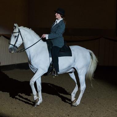 The Buckeburger saddle