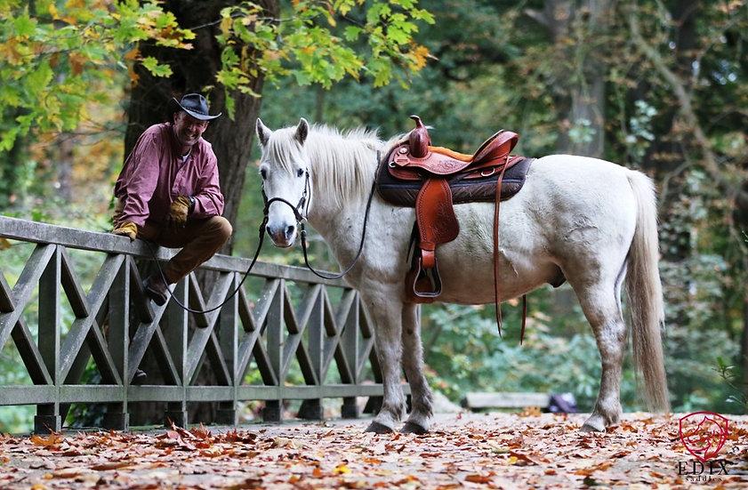 Edix Oakley Treeless Western Saddle