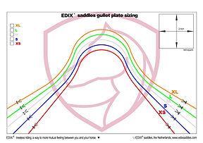 EDIX Gullet plate sizing- EN.jpg
