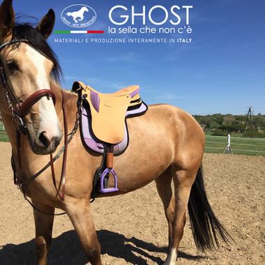 Ghost Saddles