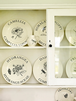 Modern Botanicals Dinner Plates