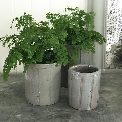 Vintage Confiture Style Planters- three sizes