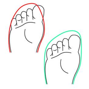 Die Schuhform