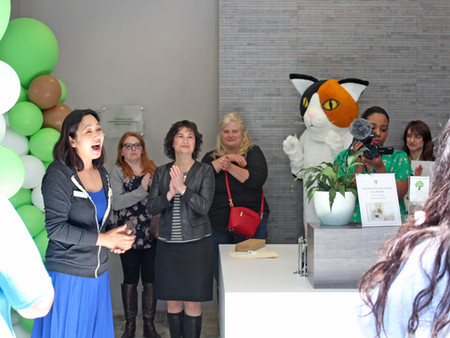 Tree House Humane Society Cat Cafe Grand Opening