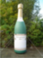 champagnefles 4 meter.jpg