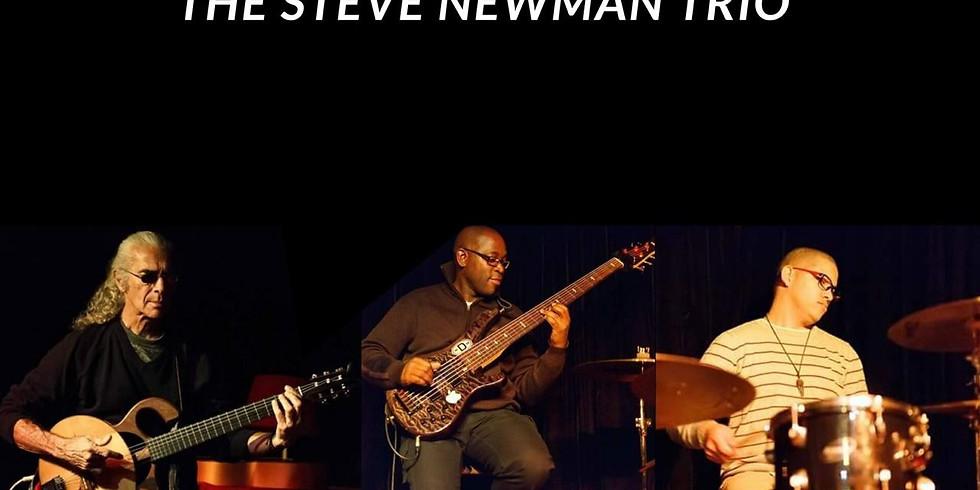THE STEVE NEWMAN TRIO
