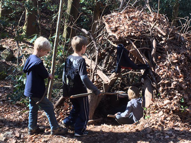 Teamwork at Forest time