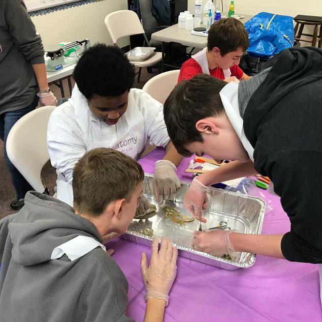 Homeschool Science Biology & Chemistry Two Day Lab Intensives - Mechanicsville, Virginia