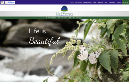 Life & Wellness Counseling & Consulting