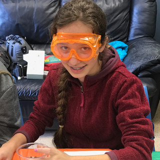 Homeschool Science Biology & Chemistry Two Day Lab Intensives - Reading, Michigan