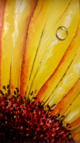 Sunflower Triple Set