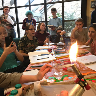 Homeschool Science Biology & Chemistry Two Day Lab Intensives - Columbia, South Carolina