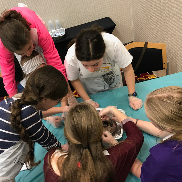 Homeschool Science Biology & Chemistry Two Day Lab Intensives - Raleigh, North Carolina