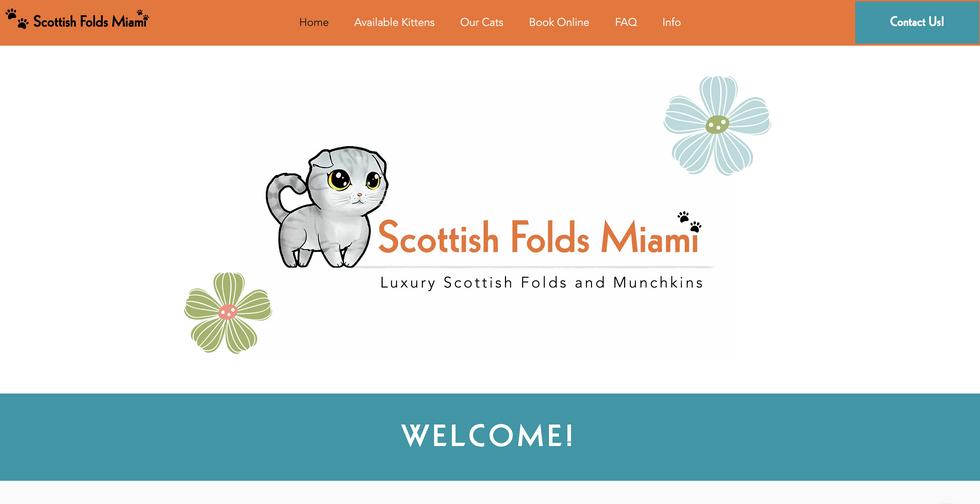 Scottish Folds Miami