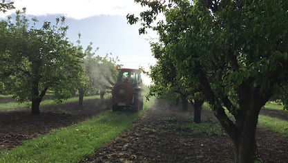 Intelligent Sprayer | Spraying In Orchard