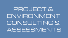 CONSULTING ASSESSMENTS