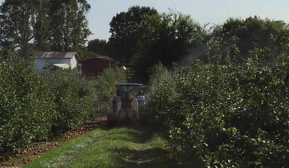 Intelligent Sprayer | Spraying Apples