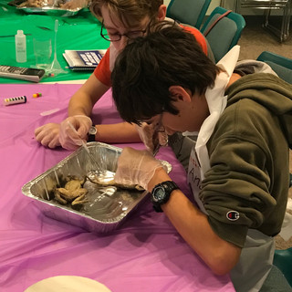 Homeschool Science Biology & Chemistry Two Day Lab Intensives - Oregon, Illinois