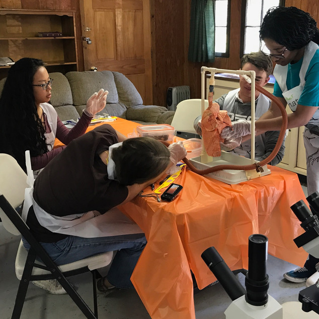 Homeschool Science Biology & Chemistry Two Day Lab Intensives - Beach City, Ohio