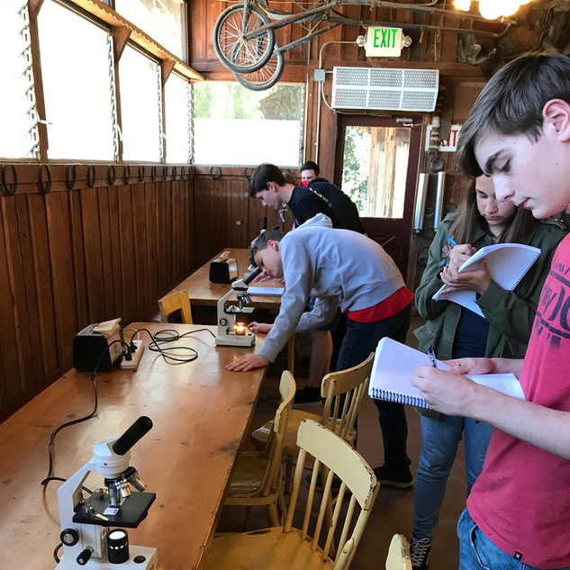 Homeschool Science Biology & Chemistry Two Day Lab Intensives - Bonsall, California