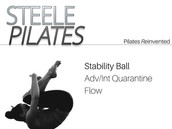 Stability Ball Adv/Int Quarantine Flow