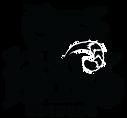 CBR-Logo-Large-white.png