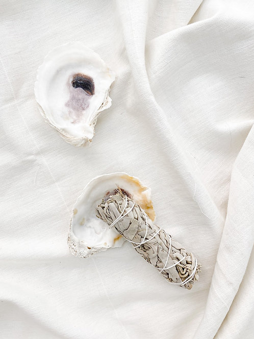 Oyster Smudging Shell