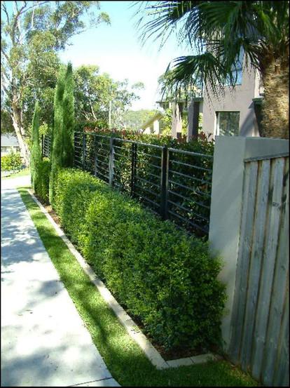 Bridgewater Estate 5.jpg