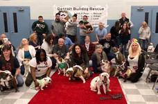 Bulldog Group Photo.jpg