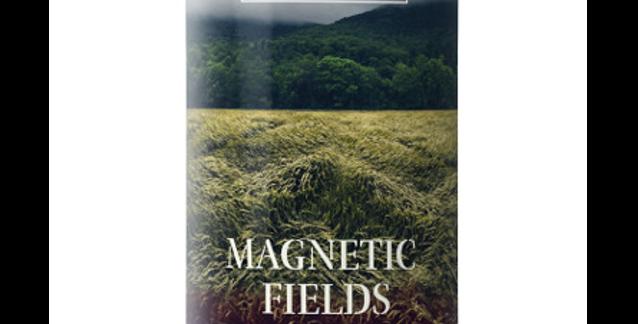 Burnt Mill - Magnetic Fields