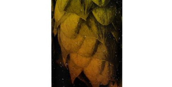 Vocation Brewery - Total Riwaka