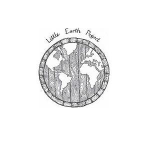 Little Earth Project.jpeg