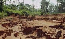 6 soil erosion.jpg