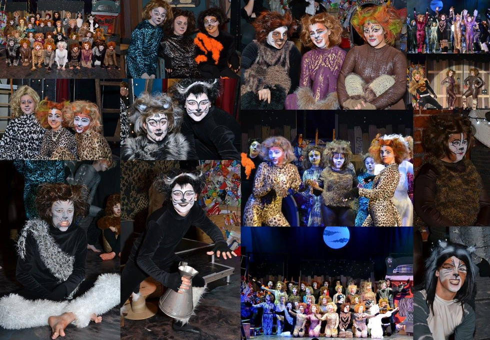 CATS Costumes