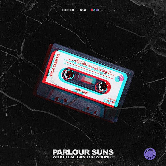 Parlour Suns What Else Can I Do Wrong? Album Artwork.