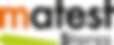 logo Matest.png