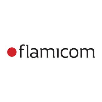 Flamicom_EcoRocket_Sponsor.jpg