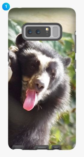 Andean Bear Samsung Phone Case (Original)