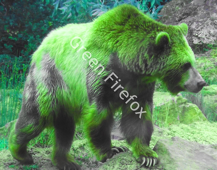 Grizzly Bear Wall Decal (Color)