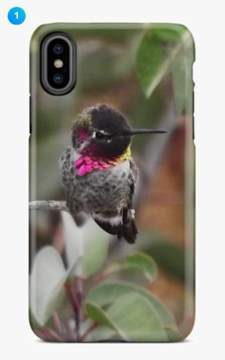 Anna's Hummingbird Apple Phone Case (Original + 7 Colors)