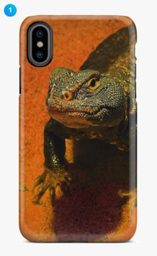 Spiny-tailed Lizard Apple Phone Case (8 Colors)