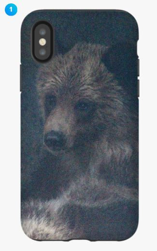 Grizzly Bear I Apple Phone Case (Original)